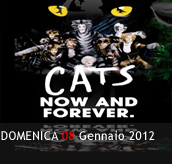 PHOTOGALLERY - CATS NOW AND FOREVER. - 08/01/2012 - Boccaccio Club